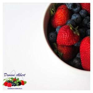 👉🏻 Hai mai provato i nostri Nettari di Frutta? Sono preparati da noi con la frutta coltivata e raccolta nella nostra azienda.  Visita il nostro Shop: 🛒 www.shopagricoladomini.it/15-nettari  📞 329.4195850 📧 domini@agricoladomini.it 📍 Frazione Lateis, 19 - 33020 Sauris (UD)
